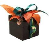 CubeBox® 500g Bruin 5C_